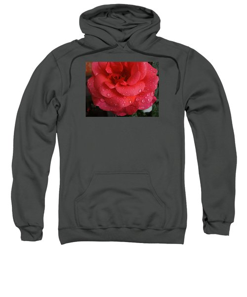 June  Rose  Sweatshirt