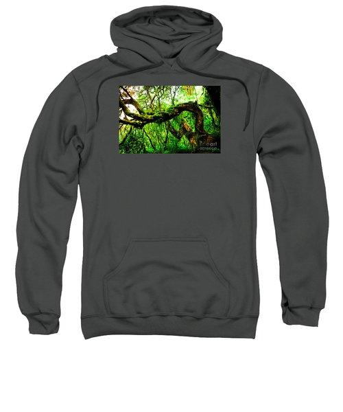 Jungle Forest Himalayas Mountain Nepal Sweatshirt