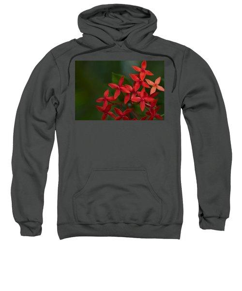Jungle Geranium Sweatshirt