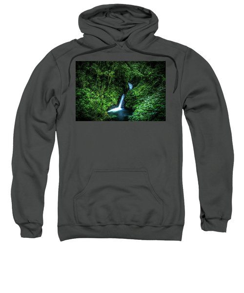 Jungle Waterfall Sweatshirt