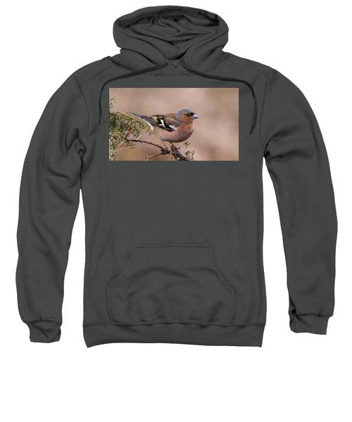 Juniper Bird Sweatshirt