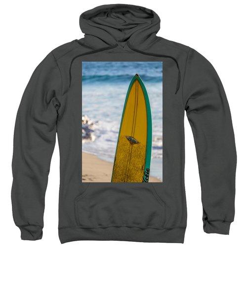 Just A Hobie Of Mine Sweatshirt