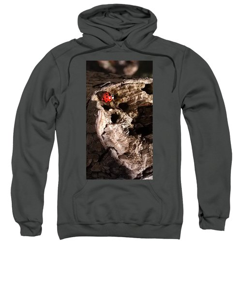 Just A Place To Rest Sweatshirt