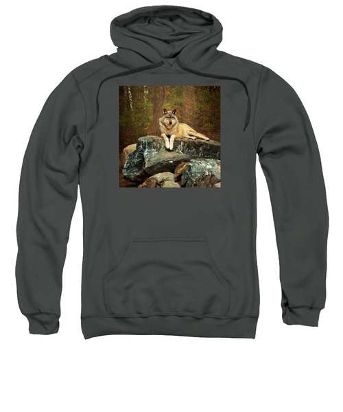 Just Chilling Sweatshirt
