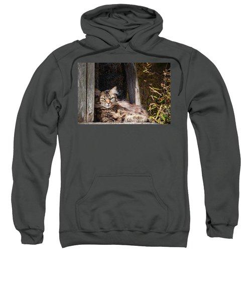 Just Lazing Around Sweatshirt