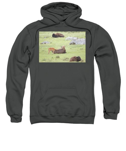 Just Resting My Eyes Sweatshirt