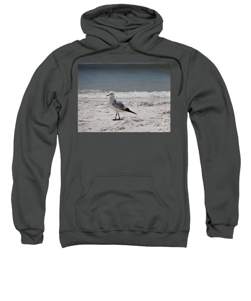 Just Strolling Along Sweatshirt