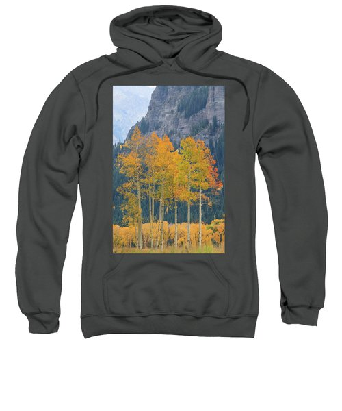 Sweatshirt featuring the photograph Just The Ten Of Us by David Chandler
