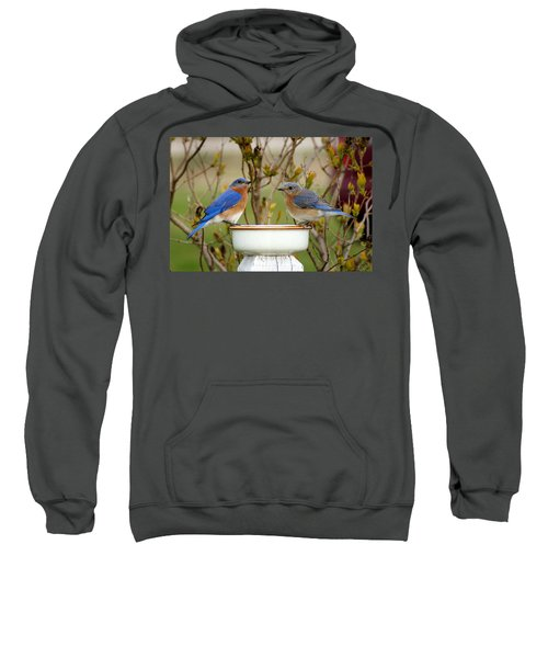Just The Two Of Us Sweatshirt by Bill Pevlor