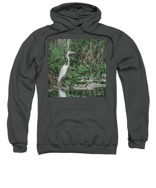 Just Wading Around Sweatshirt