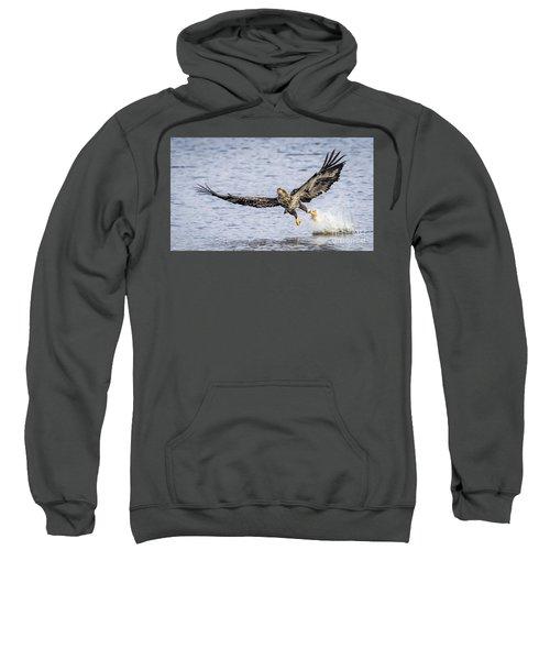 Juvenile Bald Eagle Fishing Sweatshirt