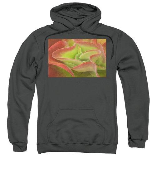 Kalanchoe Lucia The Beautiful Sweatshirt