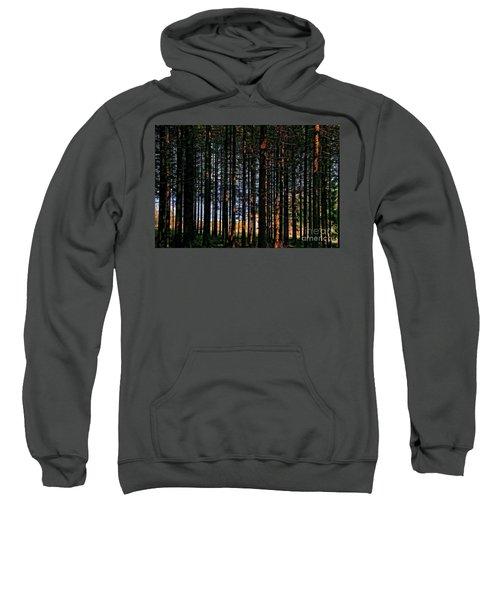 Kielder Forest And Kielder Water Sweatshirt