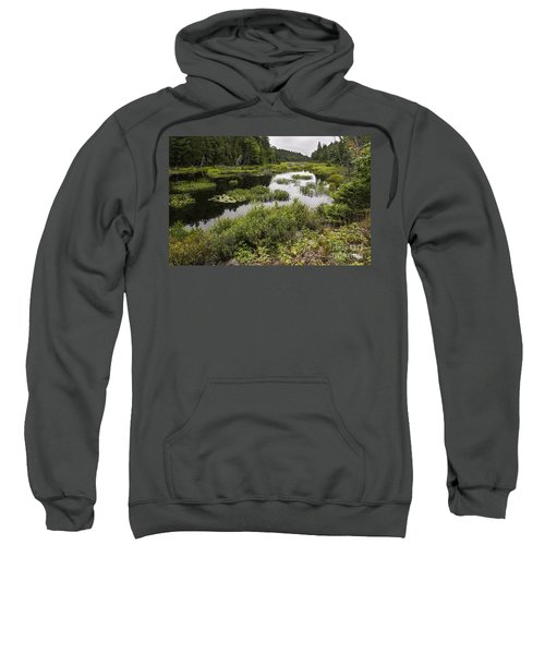 Killarney Marsh-4643 Sweatshirt