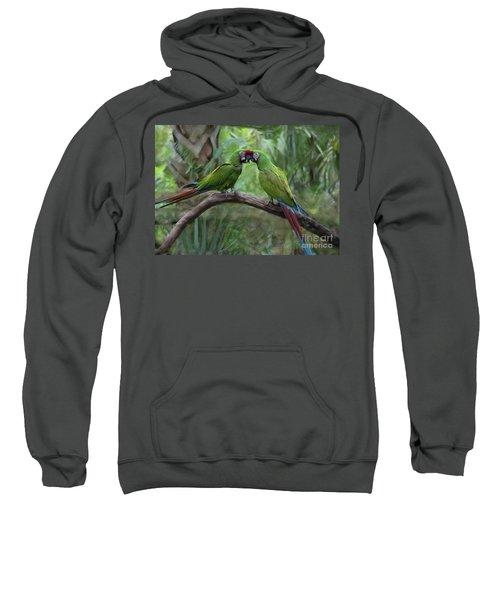 Kissing Macaws Sweatshirt