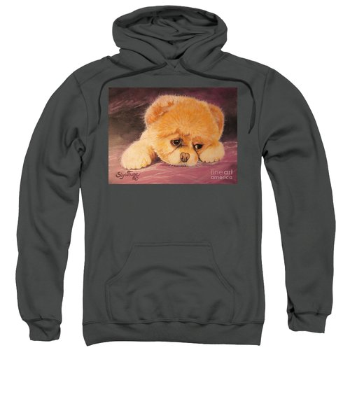 Flying Lamb Productions     Koty The Puppy Sweatshirt