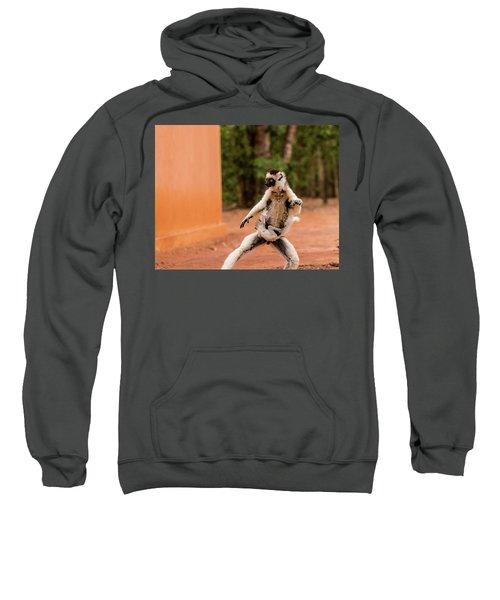 Kung Fu Mom Sweatshirt by Alex Lapidus