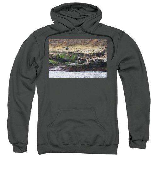 La Jolla Sea Lions Sweatshirt
