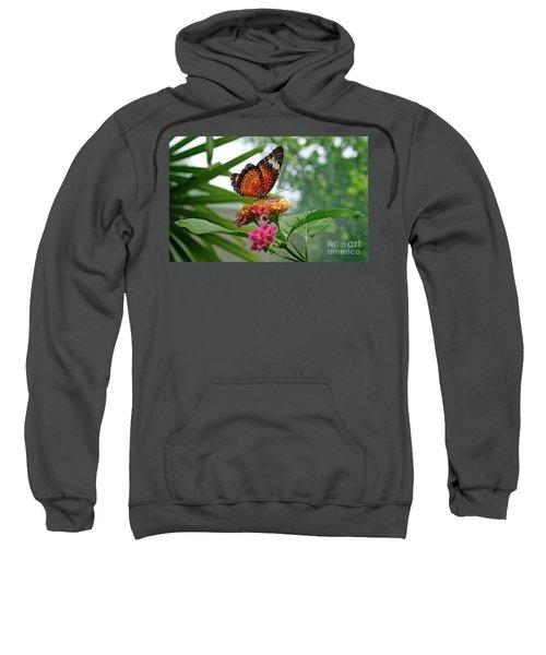 Lacewing Butterfly Sweatshirt
