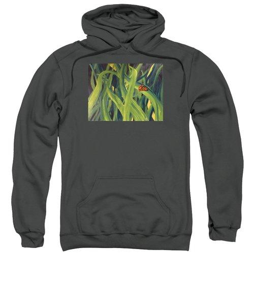 Lady Bugs Sweatshirt
