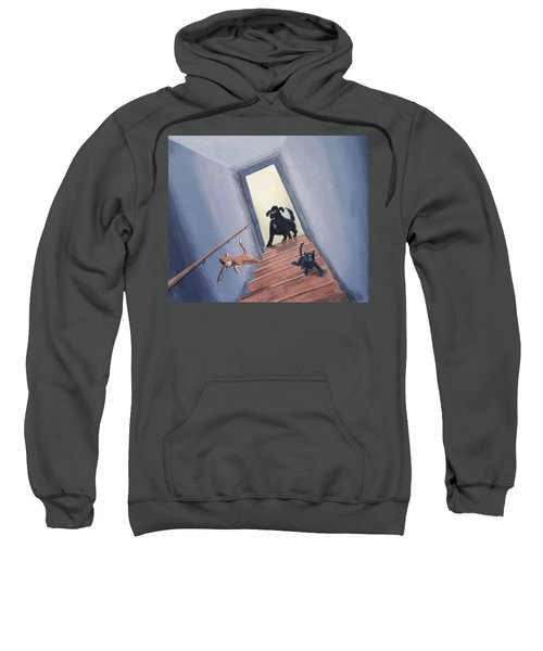 Lady Chases The Cats Down The Stairs Sweatshirt