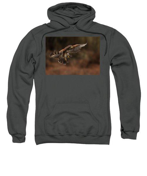 Landing Approach Sweatshirt