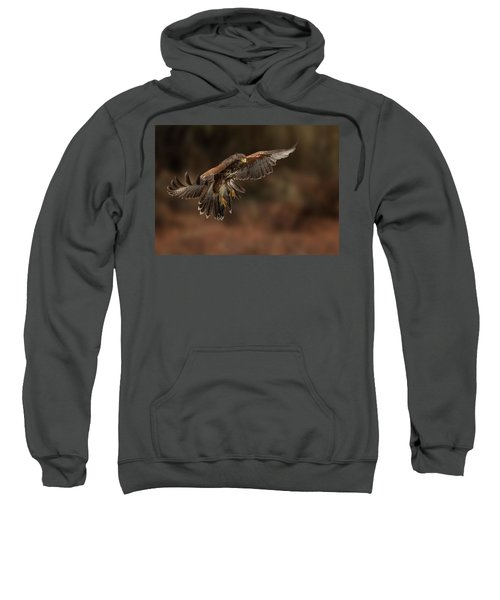 Landing Approach Sweatshirt
