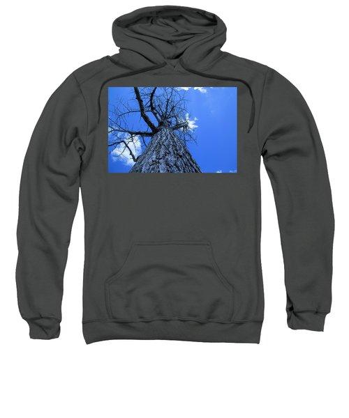 Landscape Art Sweatshirt