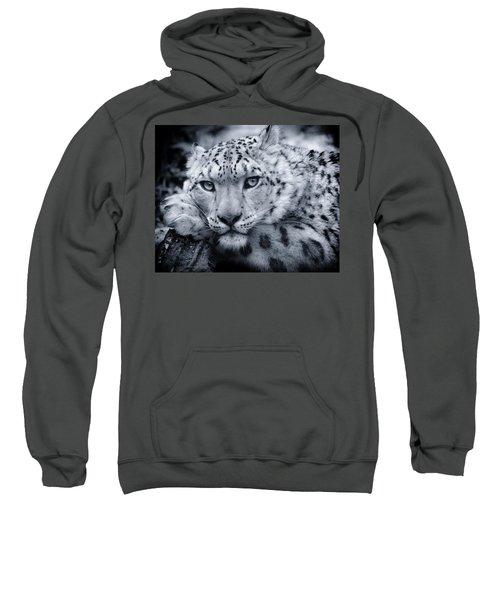 Large Snow Leopard Portrait Sweatshirt