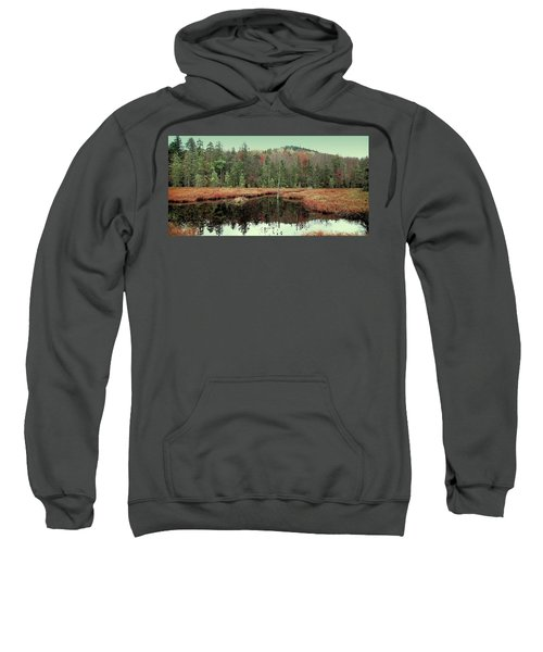 Sweatshirt featuring the photograph Last Of Autumn On Fly Pond by David Patterson