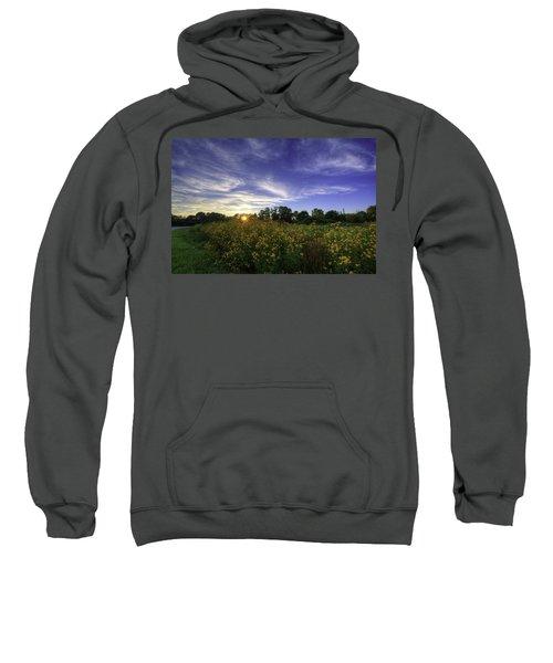 Last Rays Over The Flowers Sweatshirt