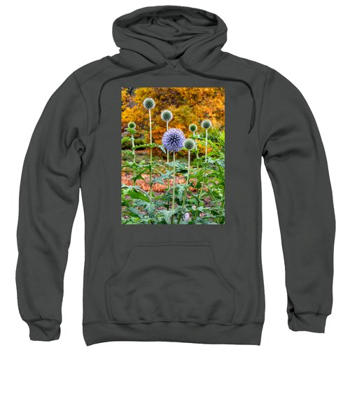 Late Bloom Among Fall Colors Sweatshirt