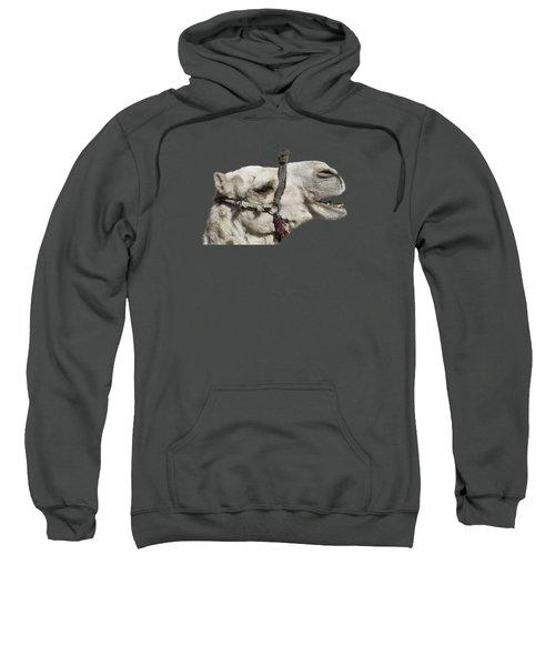 Laughing Camel Sweatshirt