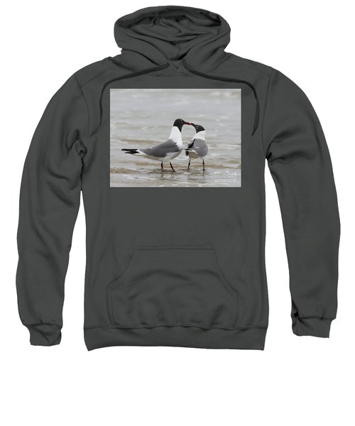 Laughing Gulls In Love Sweatshirt