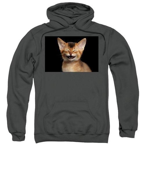 Laughing Kitten  Sweatshirt