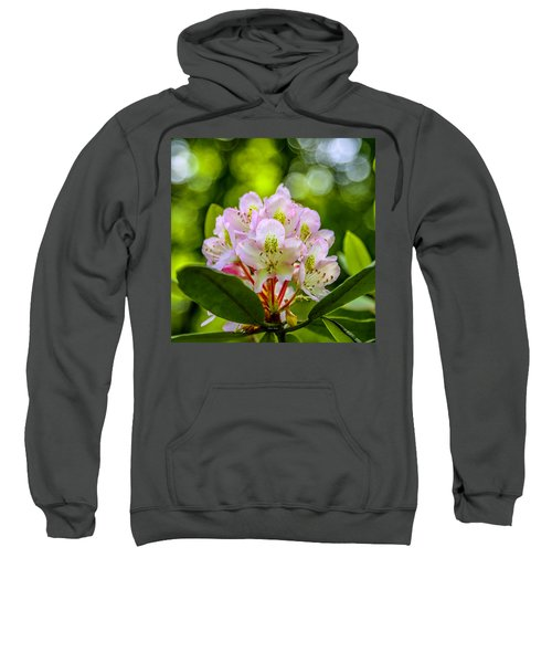 Laurel Gems Sweatshirt
