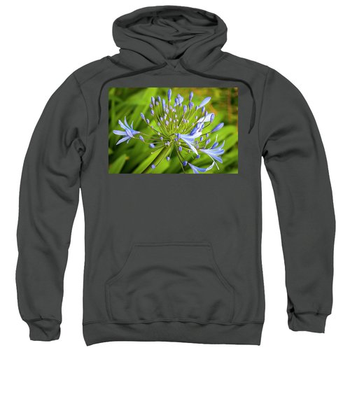 Lavendar Buds Sweatshirt