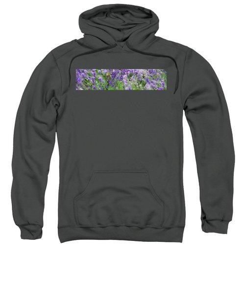 Lavender Field, 2018 Sweatshirt