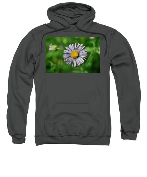 Lavender Serenity Sweatshirt