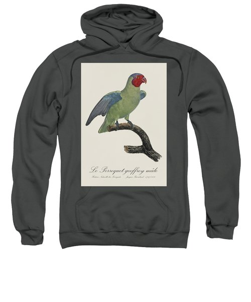 Le Perroquet Geoffroy Male / Red Cheeked Parrot - Restored 19th C. By Barraband Sweatshirt by Jose Elias - Sofia Pereira