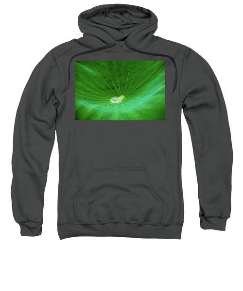 Leaf Cupping A Giant Water Drop Sweatshirt