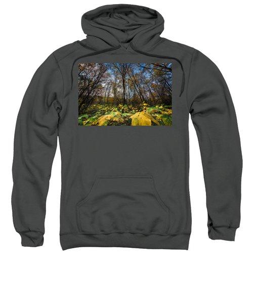 Leafy Yellow Forest Carpet Sweatshirt