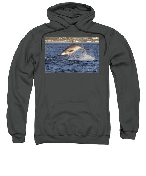 Jolly Jumper - Bottlenose Dolphin #40 Sweatshirt