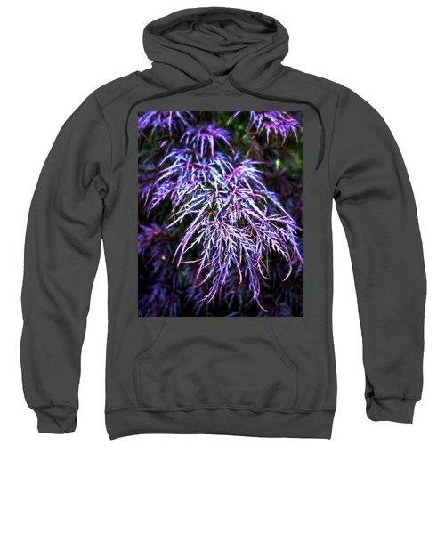 Leaves In The Light Sweatshirt