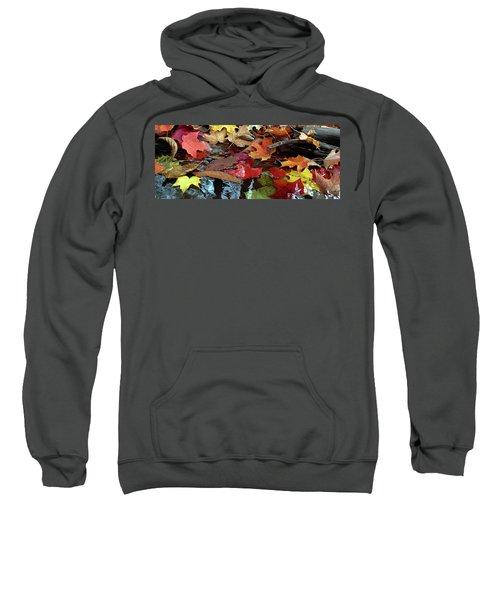 Leaves Of Color Sweatshirt