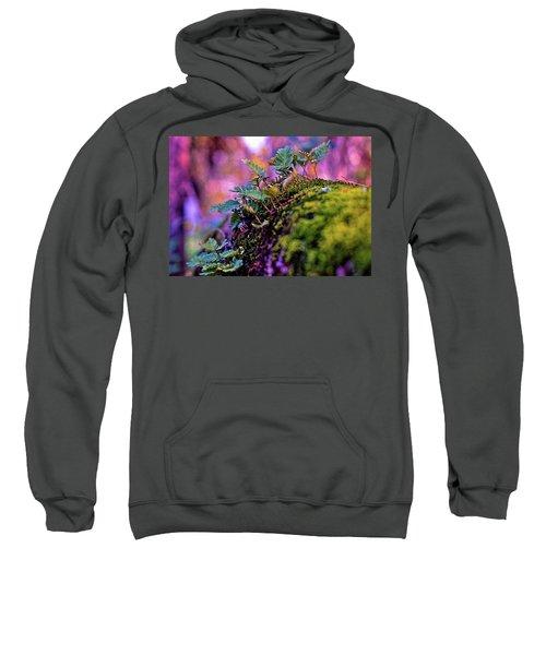 Leaves On A Log Sweatshirt