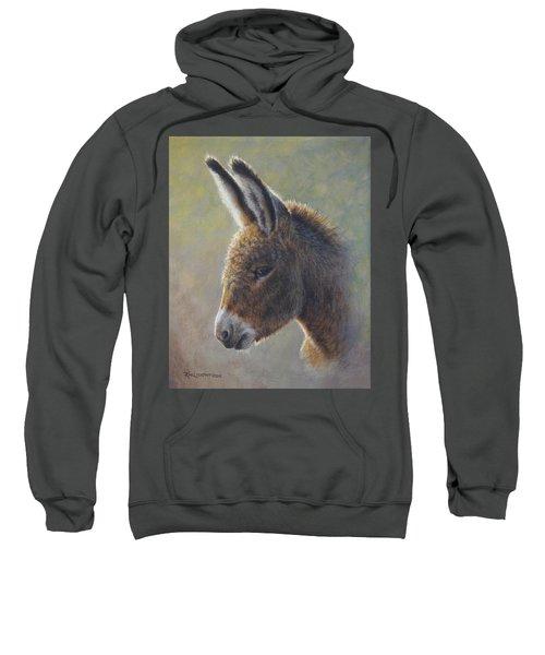Lefty Sweatshirt