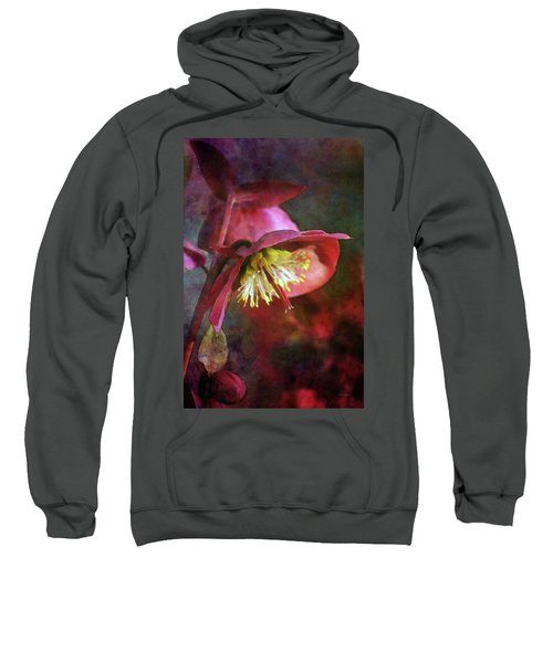 Lenten Rose Bowing To The Sun 8712 Idp_2 Sweatshirt