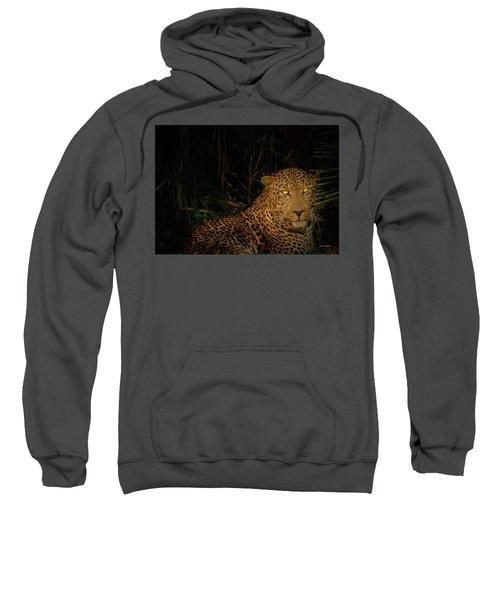 Leopard Hiding Sweatshirt