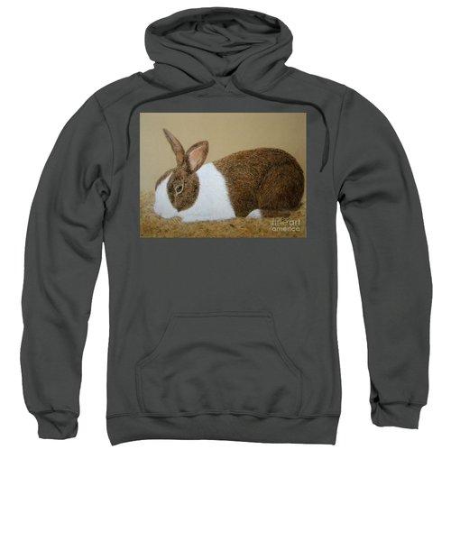 Les's Rabbit Sweatshirt